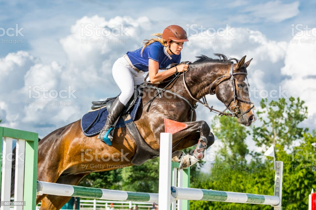 Show jumping - horse with female rider jumping over hurdle stock photo