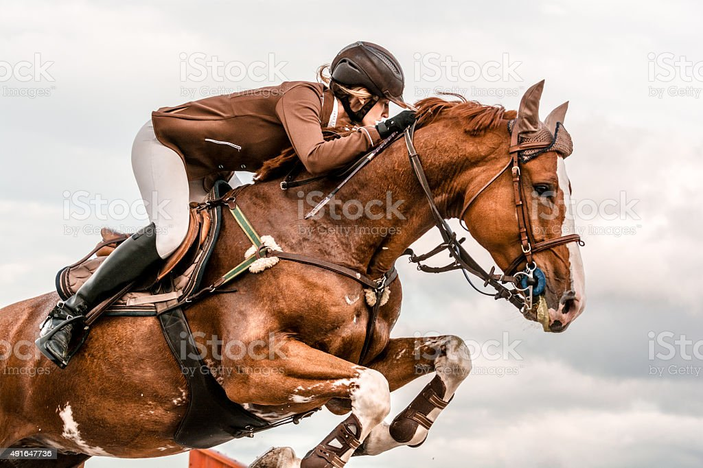 Show jumping - horse with rider jumping over hurdle - 免版稅2015年圖庫照片
