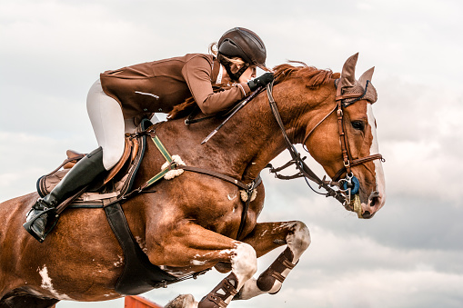 Close-up of horse with a rider jumping over a hurdle. The photo shows the moment when the horse passes over the hurdle. The female rider is raised in the saddle and leaning forward while the horse prances. The rider and the horse seem coordinated and synchronized. The girl wears a brown jacket that matches in color with the horse. In the background is the moody sky. The photo was taken in a training, but the rider has been equipped as for a competition.