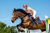 Close-up of horse with a rider jumping over a hurdle. The photo shows the moment when the horse passes over the hurdle. The female rider is raised in the saddle and leaning forward while the horse prances. The rider and the horse seem coordinated and synchronized. In the background is the clear blue sky and treetops.