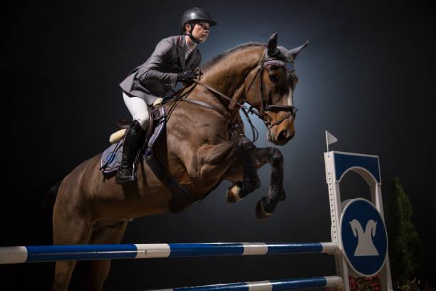 障害飛越 - 乗馬 ストックフォトと画像