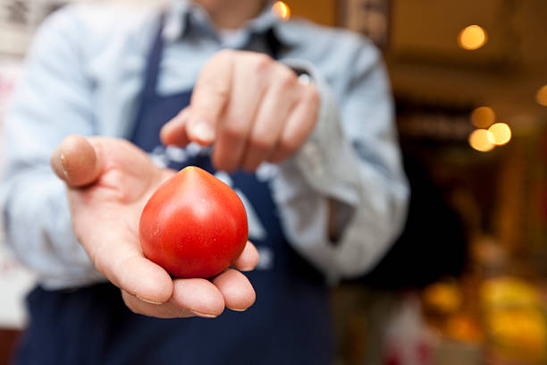 Showing a tomato stock photo