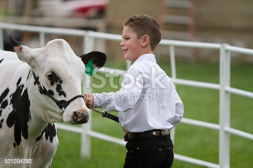 istock Showing at the County Fair 521204292