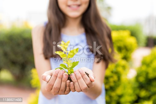 Hispanic girl protecting small plant on Earth Day in garden