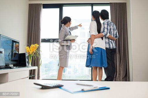 istock Showing the view 524170201