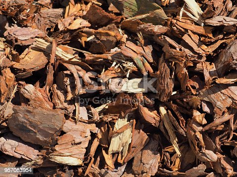 Shredded brown bark background, close-up. Wood mulch chips from pine bark. Garden decorative and landscape works