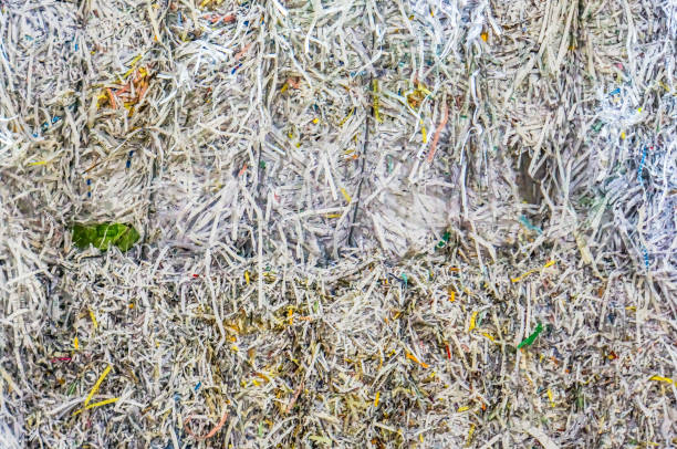 shredded paper for recycling stock photo