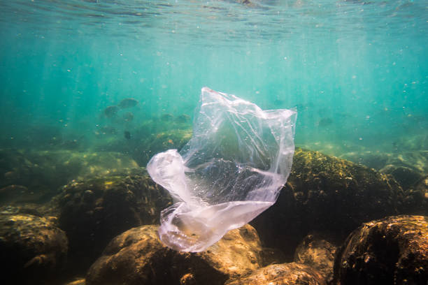 shredded plastic bag drifting under the surface of a blue, tropical ocean. Bad ecology of sea water. environmental pollution. garbage under the water. stock photo