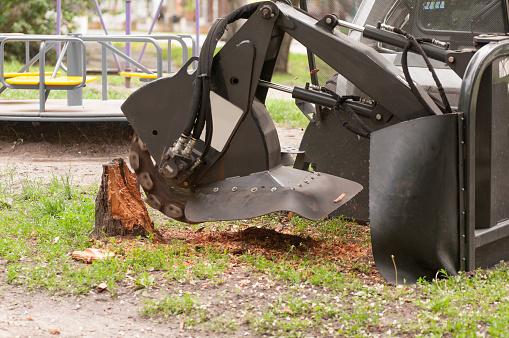 shredder for sawn wood
