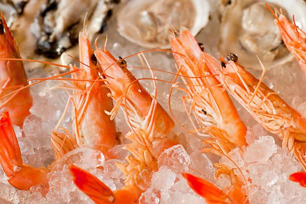 Krabben und Austern auf einem Bett aus Eis – Foto