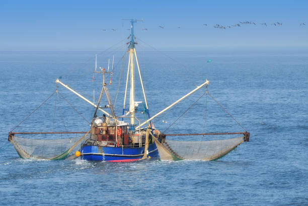 shrimp boat in wattenmeer national park,germany - fishing boat stock pictures, royalty-free photos & images