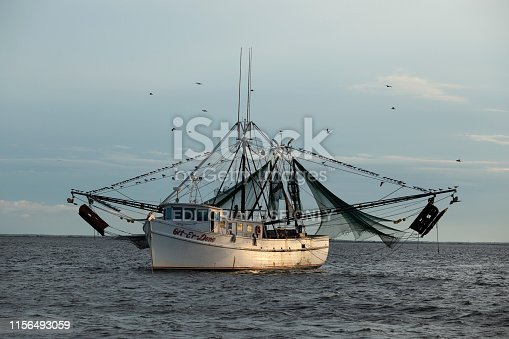 Brunswick, GA, USA - June 16, 2019:  This is a shrimp boat off the coast of Georgia (US) near sunset.  It is surrounded by birds.