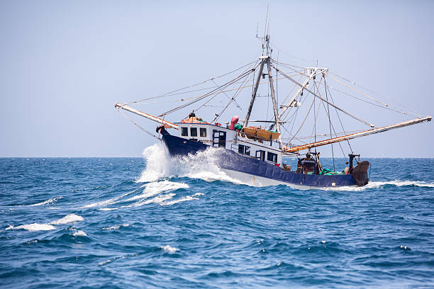 shrimp boat - fishing boat stock pictures, royalty-free photos & images