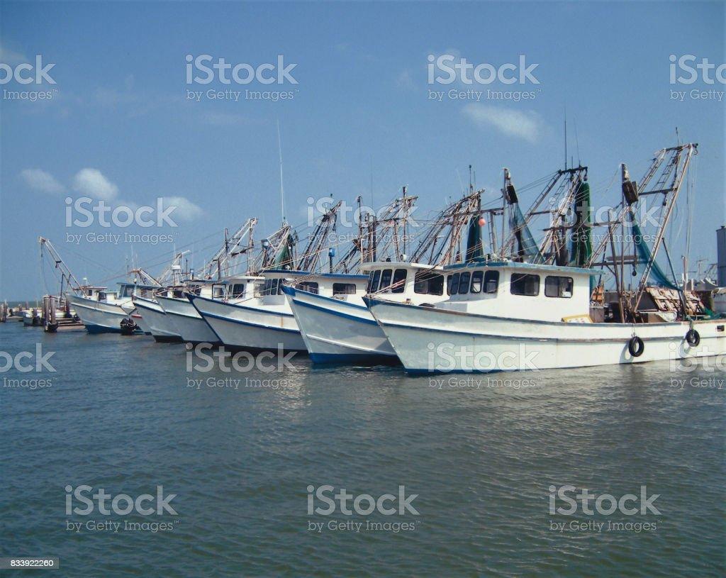 Barcos de camarão - foto de acervo