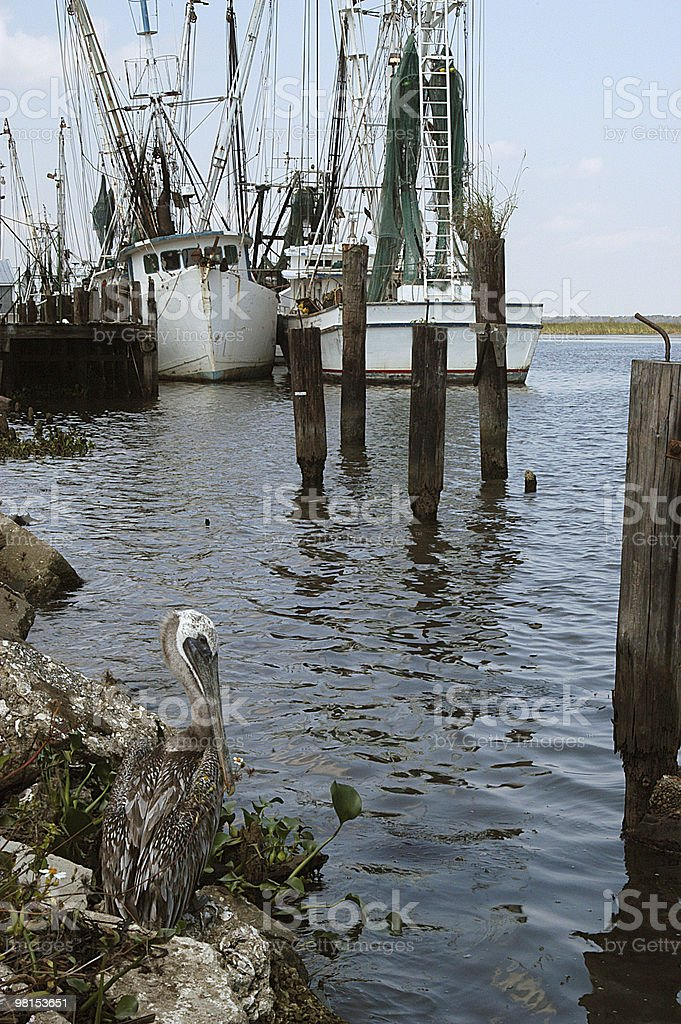 Shrimp Boats royalty-free stock photo