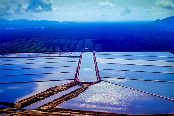 Garnelen-farm – Foto
