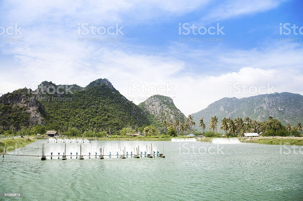 Shrimp farm with mountains in the background stock photo