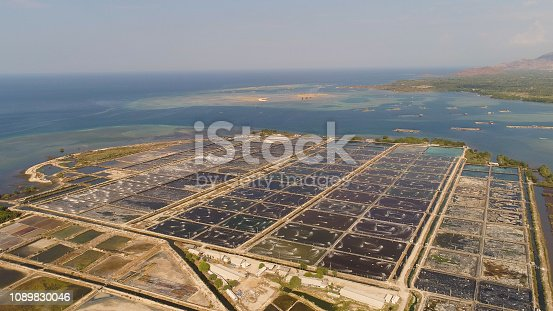 shrimp farm, prawn farming with with aerator pump oxygenation water near ocean. aerial view fish farm with ponds growing fish and shrimp and other seafood. Fish hatchery pond aerial view aquaculture business exported international market. java, indonesia