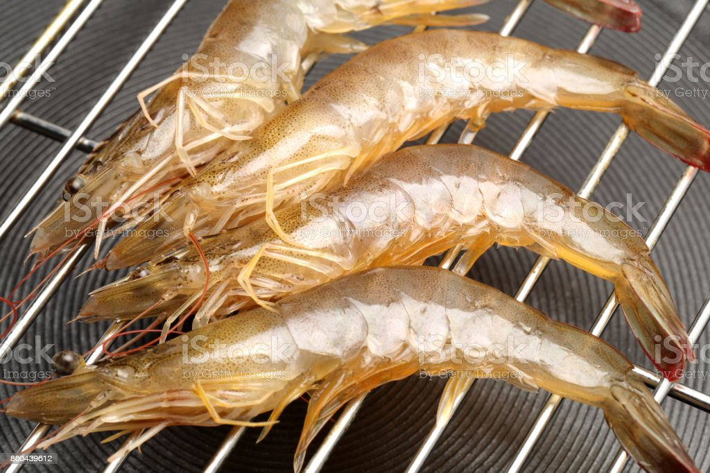 Shrimp isolated on Pan stock photo