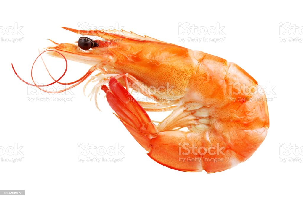 Shrimp isolated on white background - Royalty-free Appetizer Stock Photo