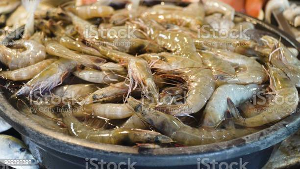 Shrimp on the counter of a street market picture id909392392?b=1&k=6&m=909392392&s=612x612&h=g otooetl2jf13ij547vvbbm1upv0fuuy44pdabwdgw=