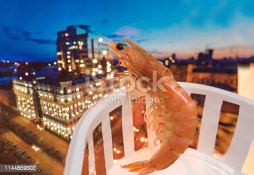 shrimp stands on the balcony and watches the night city