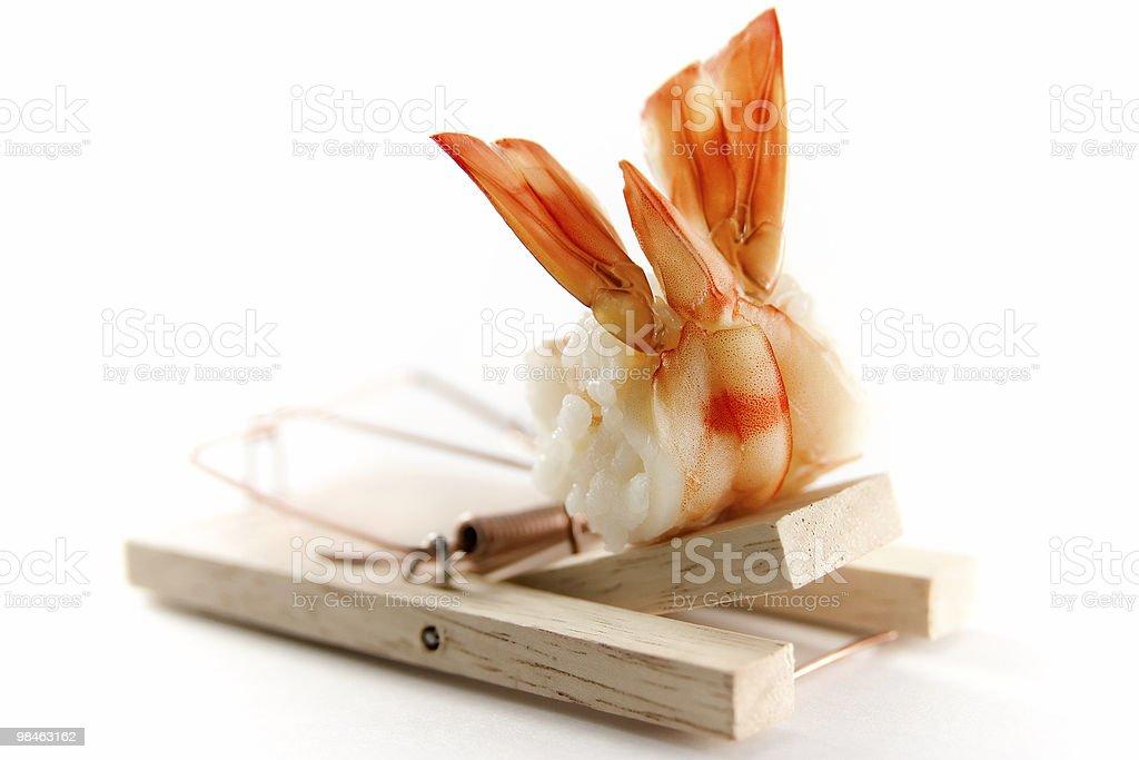 Shrimp sushi royalty-free stock photo