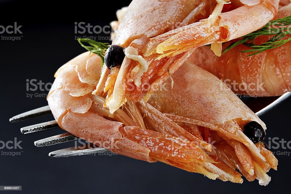 Shrimp time royalty-free stock photo