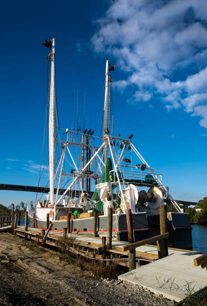 Shrimp Trawler at the Dock stock photo