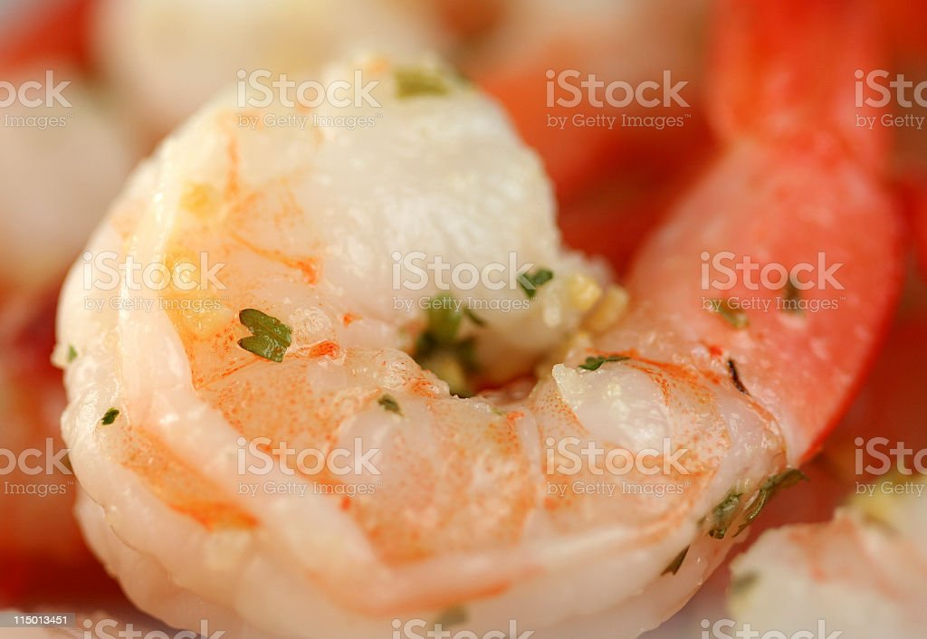 Shrimp Up Close royalty-free stock photo
