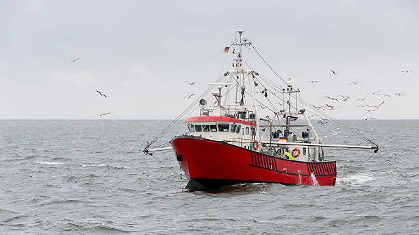 shrimper at the north sea not far from helgoland (germany) - fishing boat stock pictures, royalty-free photos & images