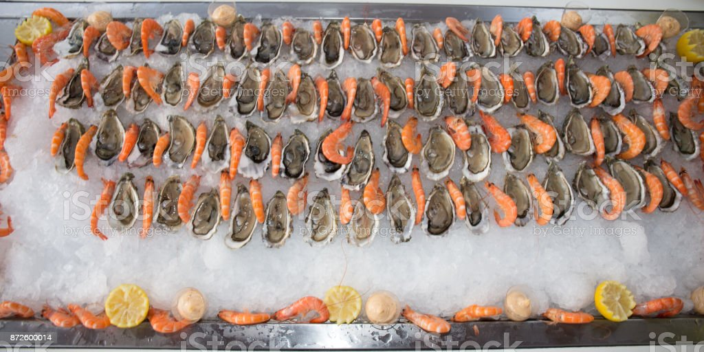 shrimps and oysters in ice for a party stock photo