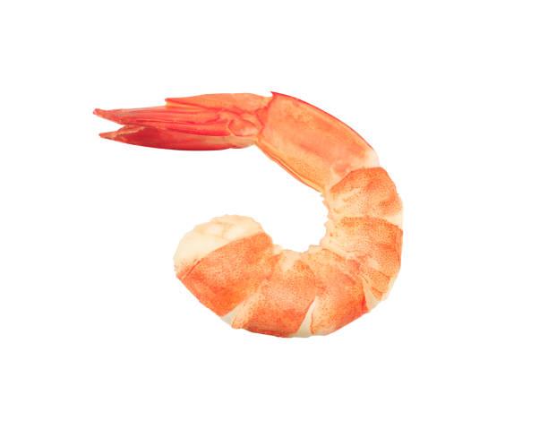 shrimps isolated on a white background stock photo