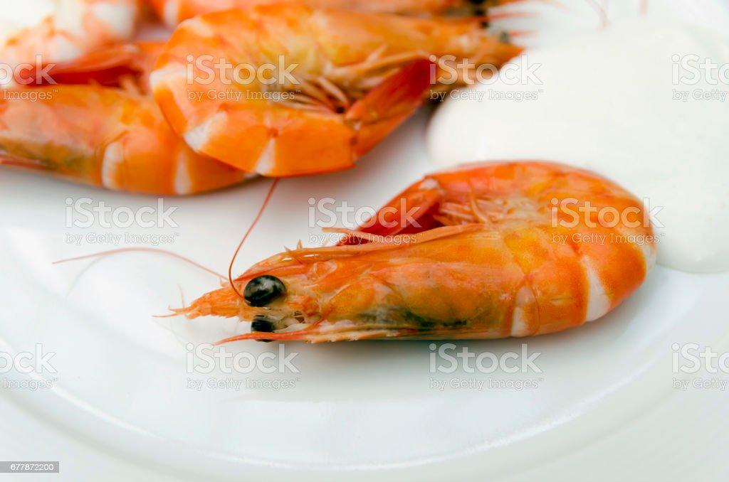 Shrimps mayonnaise stock photo