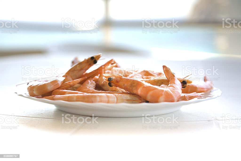 shrimps on the white plate and blue sea background stock photo