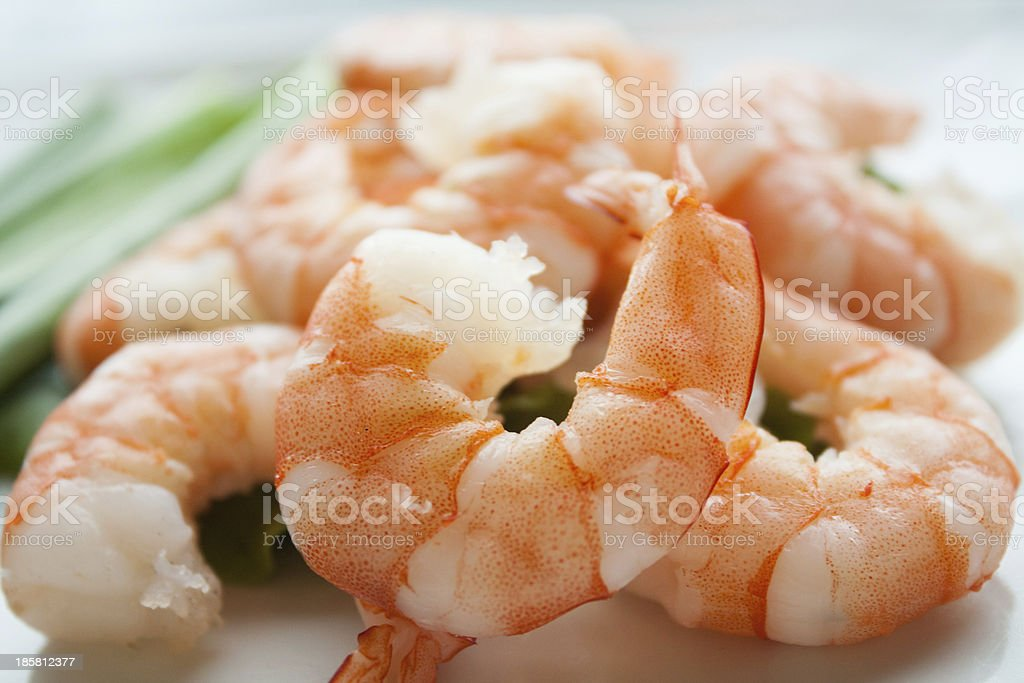 Shrimps or Prawns cooked, peeled and ready to go! stock photo