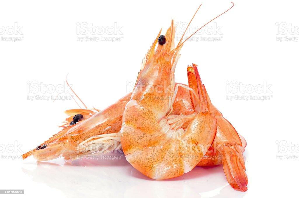shrimps stock photo