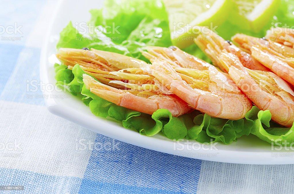 Shrimps royalty-free stock photo