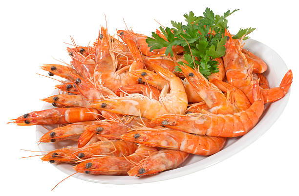 Shrimps(+clipping path)