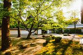神宮、京都の美しい夏の夕日