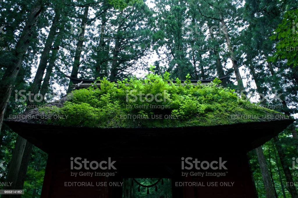 A shrine in the forest stock photo
