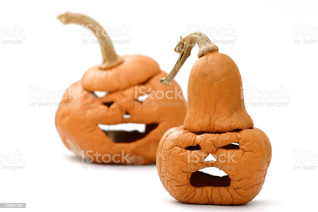 Shriveled pumpkins royalty-free stock photo