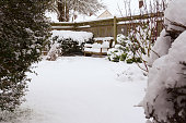 Mature shrubs and wooden bench in a rural garden covered with snow in winter