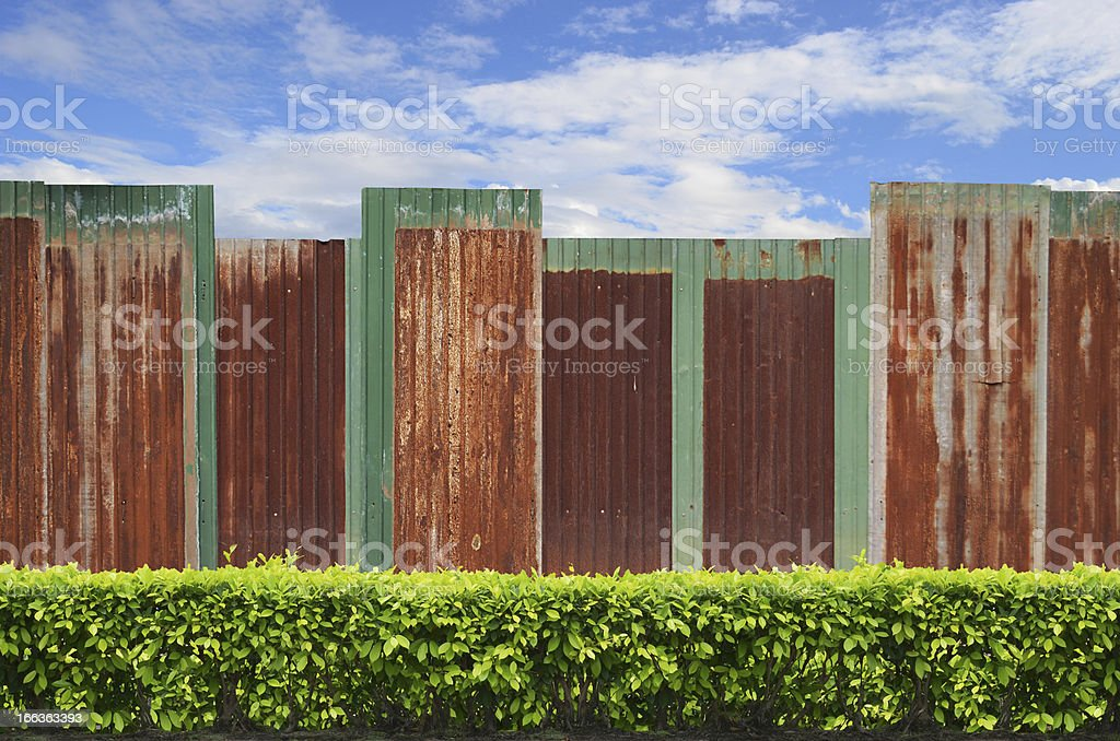shrubs with zinc fence on blue sky background royalty-free stock photo