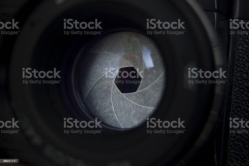 shutter stock photo