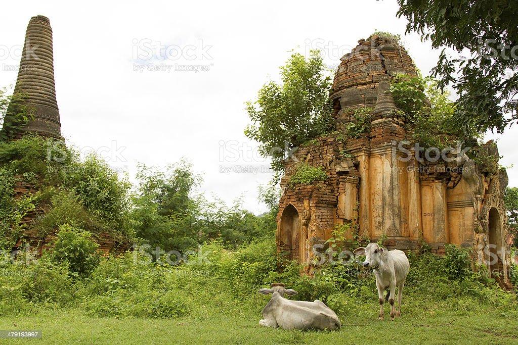 Shwe Inn Thein stupas stock photo