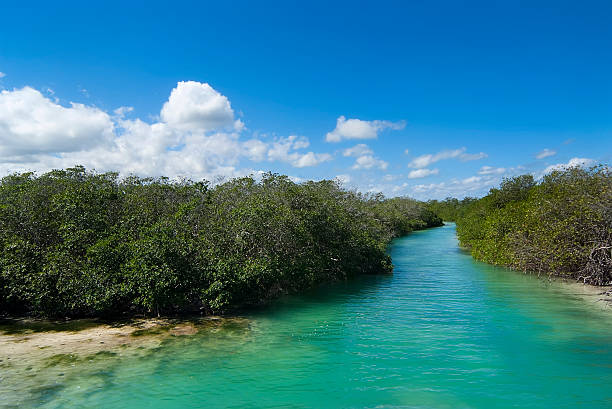 Sian Ka'an Biosphere Reserve stock photo