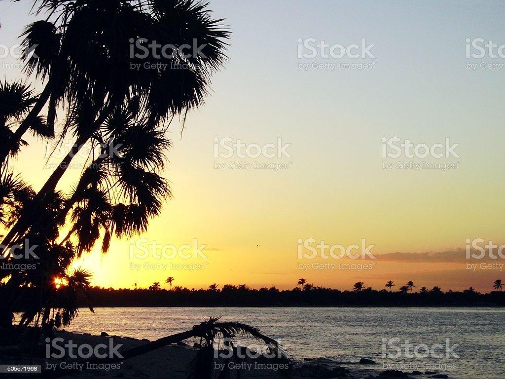 Sian Ka'an coastline at sunset, Mexico stock photo