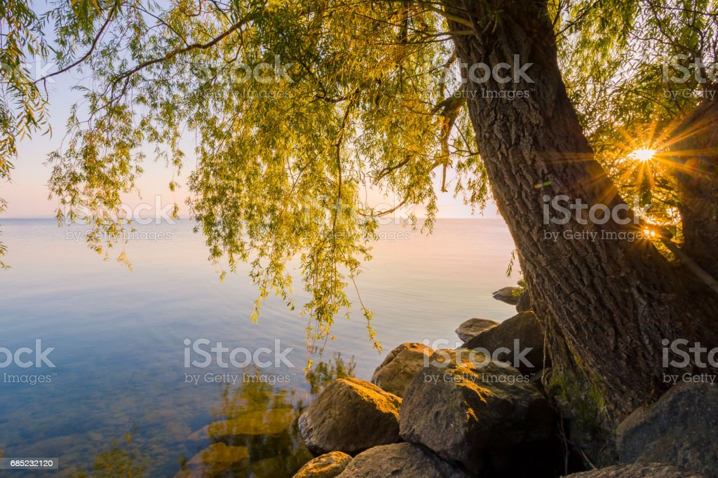 Sibbald Point Provincial Park royalty-free stock photo