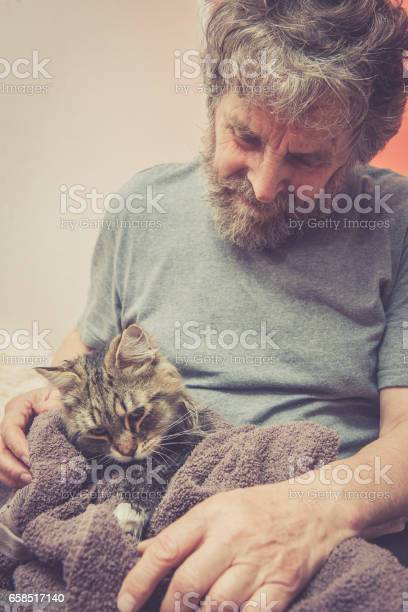 Siberian forest cat having a bath picture id658517140?b=1&k=6&m=658517140&s=612x612&h=jeg5lm2dvmtksql1zkfjdqn1paq689jgoxtzmsoi2f8=